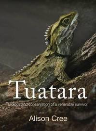 Tuatara by Alison Cree