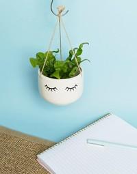Eyes Shut - Hanging Planter image