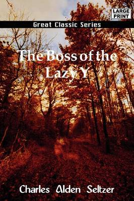 The Boss of the Lazy y by Charles Alden Seltzer image