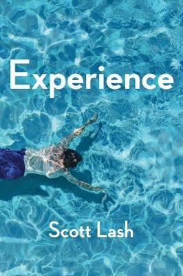 Experience by Scott Lash