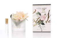Côte Noire Perfumed Natural Touch Rose in Frost (Pink Blush)