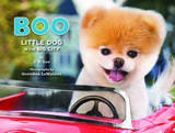 Boo: Little Dog in the Big City by J. H. Lee