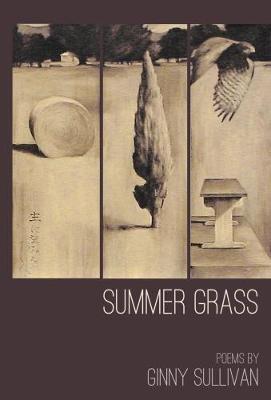 Summer grass by Ginny Sullivan
