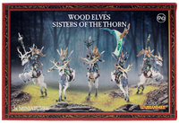 Warhammer Wood Elves Wild Riders/Sisters of the Thorn