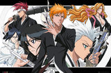Bleach: Maxi Poster - Collage landscape (473)