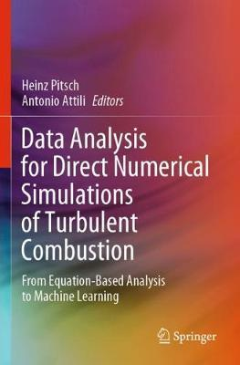 Data Analysis for Direct Numerical Simulations of Turbulent Combustion