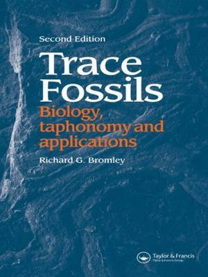 Trace Fossils by Richard G. Bromley image