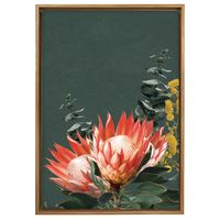 Splosh Native Framed Canvas - Protea (64x97cm)