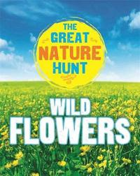The Great Nature Hunt: Wild Flowers by Jen Green