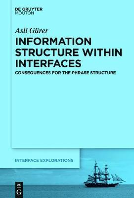 Information Structure Within Interfaces by Asli Gurer