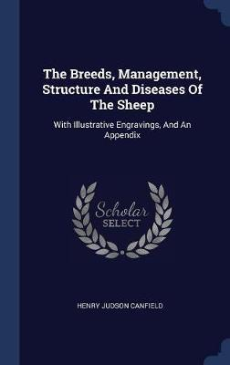 The Breeds, Management, Structure and Diseases of the Sheep by Henry Judson Canfield image