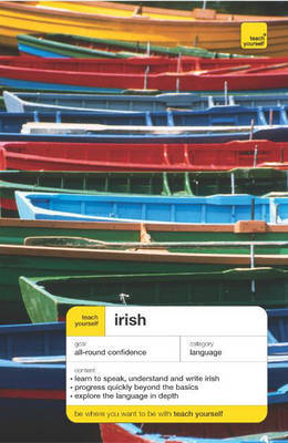 Teach Yourself Irish by Diarmuid O Se