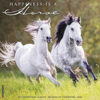 Happiness Is a Horse 2020 Wall Calendar by Willow Creek Press