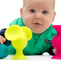 Fat Brain Toys: Squigz PipSquigz - Rattle & Teether image
