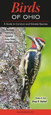 Birds of Ohio by Greg Homel