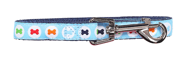 Pawise: Dog Leash - Blue/Medium (1.2m/20mm)