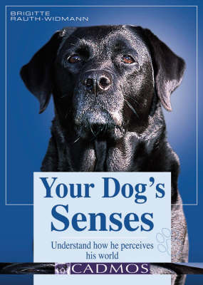 Your Dog's Senses: Understand How He Perceives His World by Dr. Brigitte Rauth-Wildman image