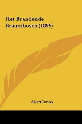Het Brandende Braambosch (1899) by Albert Verwey image