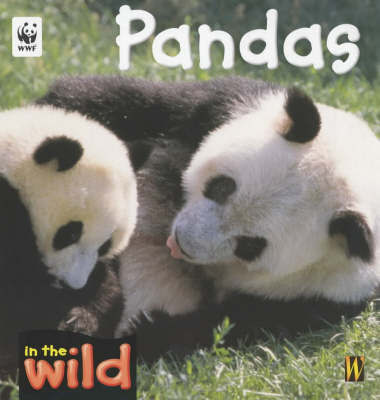In The Wild: Pandas by Patricia Kendell image