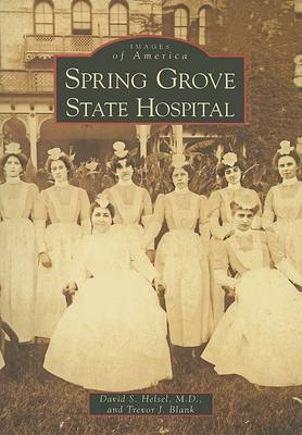 Spring Grove State Hospital by David S., M.d. Helsel image