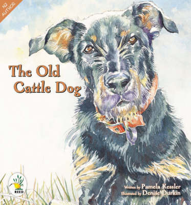 The Old Cattle Dog by Pamela Kessler