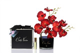 Côte Noire Perfumed Natural Touch Orchid Stem in Black (Scarlet Blossom)