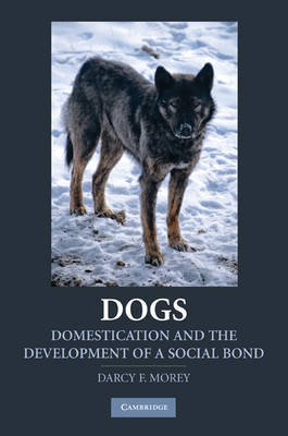 Dogs by Darcy F. Morey image