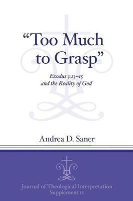 """""""Too Much to Grasp"""" by Andrea D. Saner"""