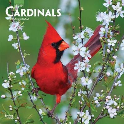 Cardinals 2019 Square by Inc Browntrout Publishers