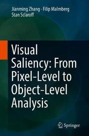 Visual Saliency: From Pixel-Level to Object-Level Analysis by Jianming Zhang