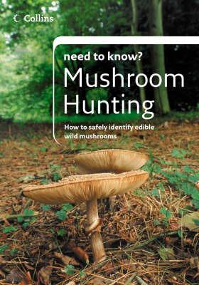 Mushroom Hunting by Patrick Harding image