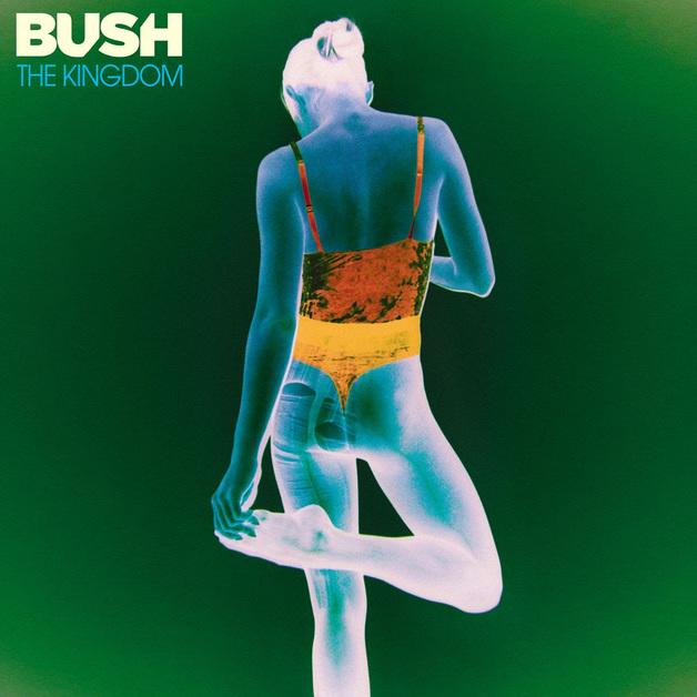 The Kingdom by Bush