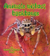 Animals without Backbones by Bobbie Kalman image
