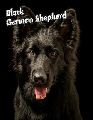 Black German Shepherd by Notebooks Journals Xlpress