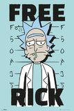Rick And Morty: Free Rick - Maxi Poster (654)