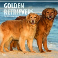 Golden Retrievers 2018 Square Wall Calendar by Inc Browntrout Publishers