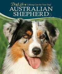 Australian Shepherd by Elizabeth M Jarrell