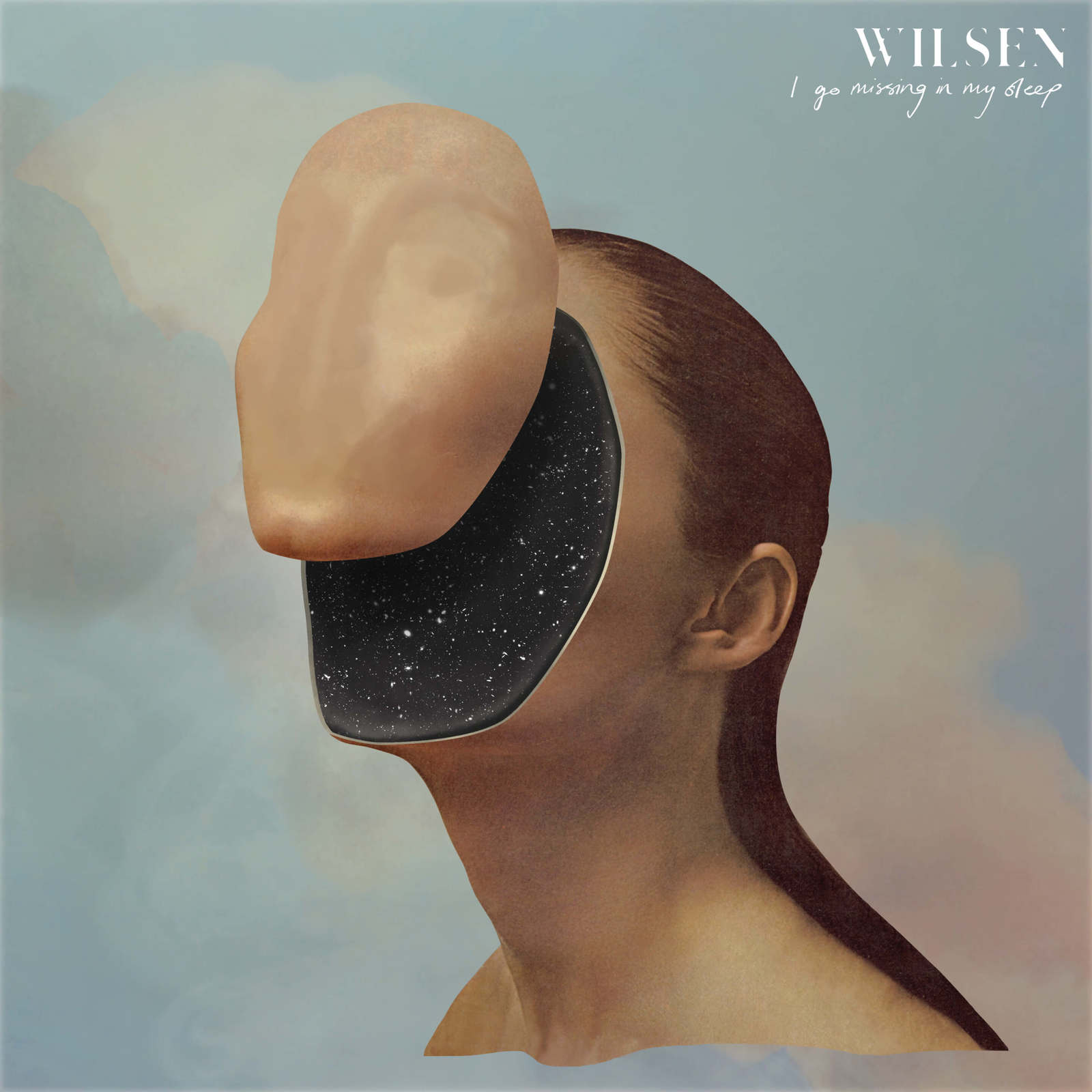 I Go Missing In My Sleep (LP) by Wilsen image
