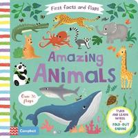 Amazing Animals by Campbell Books