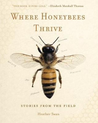 Where Honeybees Thrive by Heather Swan image