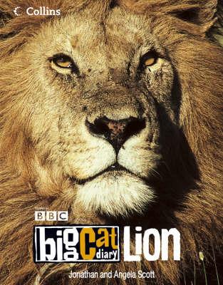 Big Cat Diary: Lion by Jonathan Scott