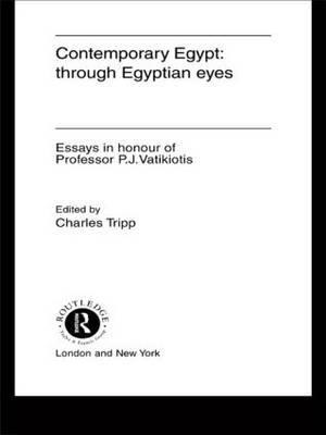 Contemporary Egypt: Through Egyptian Eyes