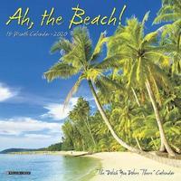 Ah the Beach! 2020 Mini Wall Calendar by Willow Creek Press