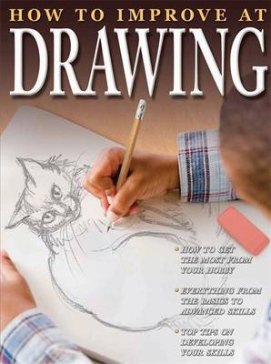 How To Improve At Drawing by Sue McMillan image