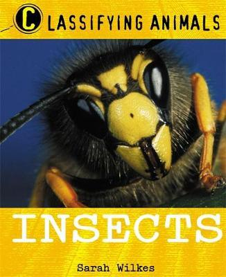 Classifying Animals: Insects by Sarah Wilkes image