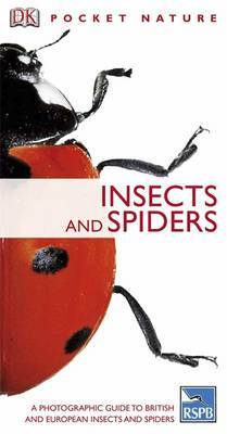 Insects and Spiders by DK
