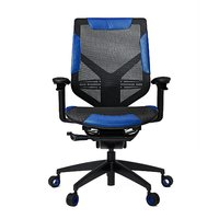 Vertagear Gaming Series Triigger Line 275 Gaming Chair - Black/Blue for  image