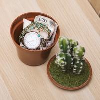 Cactus Safe image