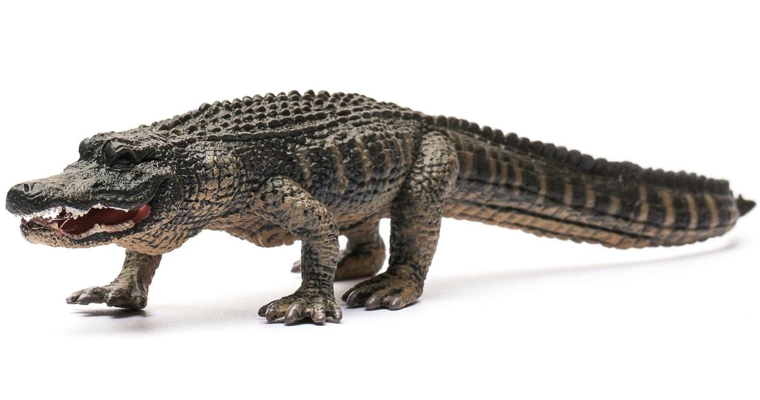 CollectA - American Alligator image
