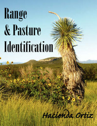 Range & Pasture Identification by Hacienda Ortiz image